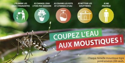 Moustique_tigre_Niveau_1_carte_postale_stop_moustiques-1