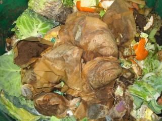 compost-heap-2-1524772