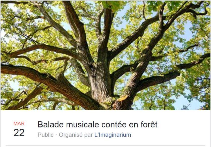 IMAG 20200322 BALADE MUSICALE